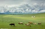 风吹草低见牛羊丨跟887一路向北草原自驾