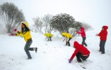 济南第二场雪已经上路,你准备好了吗?