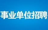 不拘一格招揽人才 济南先行区管委会公开选聘招聘工作正式启动