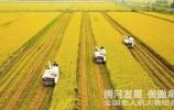 土地托管 探索中国农村新一轮土地改革路子(上篇)