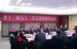 代表委员审议讨论省政府工作报告