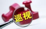 山东省委15个巡视组对40个县(市、区)开展巡视
