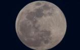 """""""超级月亮""""巧遇春分,这份""""观天时刻表""""请收好!"""