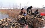 《农民日报》整版点赞济南章丘农村集体产权制度改革经验