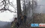木里森林火災確認為雷擊火 著火點為一棵80年樹齡云南松
