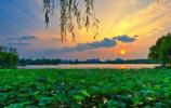 提前布局2025年常住人口1200万人发展规划!济南正在争取四项国家级试点项目