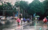 《雨中的情结》