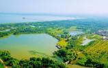 关于推进泰山区域山水林田湖草生态保护修复工程的实施意见