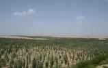 国家林业和草原局:创新形式确保成效