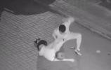 """大连警方确认抓获""""女子半夜遭殴打""""案件犯罪嫌疑人"""