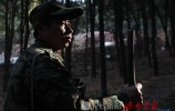 那人   那山   那林 ——记济南市林场护林员刘采法