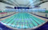 2019年國際泳聯游泳世界杯(濟南站)開賽