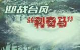 """快讯!台风 """"利奇马""""来到潍坊近:C 中心最大风力9级"""
