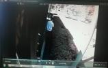 济南:路遇货车着火 公交驾驶员见义勇为及时施救