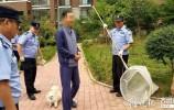 济南市将对对不文明养犬行为进行曝光