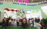 萊蕪生姜、萊蕪錫雕等產品受熱捧 萊蕪特產亮相山東文博會