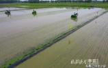45秒短视频,破解济南五洲农业碟变的密码
