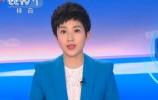 央视聚焦济南:第三届中国企业改革发展论坛透露重要信息