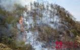 濟南市民建言《政府工作報告》 加大對引發山火之人的處罰力度 ?