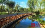 """""""公园里的城市""""让市民幸福感提升 章丘区人大讲好了这场""""生态故事"""""""