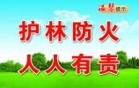 萊蕪區自然資源局科學應對 嚴防死守打贏森林防火攻堅戰