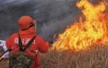 萊蕪區提升森林火災預防撲救綜合能力