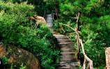 好消息!萊蕪區新增1家4A旅游景區!快看你去過沒…