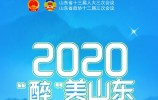 """2020""""醉""""美山东"""