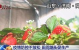 央视:济南疫情防控不放松 田间地头促生产