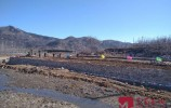 复工率全省第一!济南市高标准农田建设项目全面复工