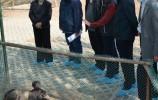 市人大常委會調研禁止非法野生動物交易、革除濫食野生動物陋習的貫徹落實情況