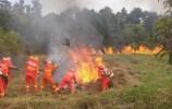 吸烟引发山林火灾15人被捕