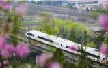 4月10日起,全国铁路执行新运行图 济南多趟列车有调整