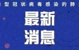 世卫组织:中国以外新冠确诊病例达4004397例