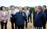山东省副省长刘强已任省委常委、秘书长