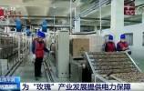 """央视:济南为""""玫瑰""""产业发展提供电力保障"""