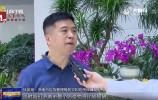 """山东新闻联播:济南市坚持以""""出彩型""""好干部引领打造""""出彩型""""城市"""