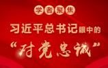 """图解:习近平总书记眼中的""""对党忠诚"""""""