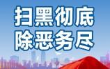 济南市法院部署下半年扫黑除恶工作 把每一起案件办成铁案