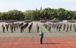 《通知》来啦 41所高校从山东招收定向培养士官3593人!