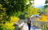 2020年度济南市公园通游年票有效期延长至2021年3月31日