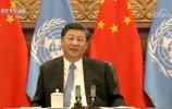 独家视频丨习近平会见联合国秘书长古特雷斯