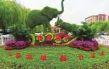 珍稀动物宝宝 3万多株花卉 齐迎国庆