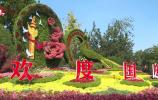 视频 | 鲜花扮靓泉城 喜迎中秋国庆佳节