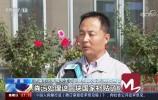 央视《朝闻天下》:济南规模猪场复养 生产恢复进程加快