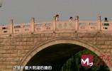 濟南老橋往事|鵲華橋畔 偏巷悠歌