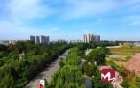 視頻 | 先行區:緊抓跨河通道新進展 布局產業聚集新合力