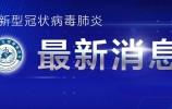 2020年11月28日0时至24时山东省新型冠状病毒肺炎疫情情况