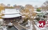 组图|真的很美~错过的济南雪景看这里就够了!