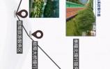 一条路,百样景! 省道103旅游公路打造济南南部山区最美风景线